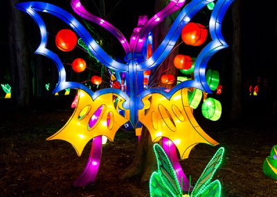 DandenongLightFestival2016-(11-of-20)