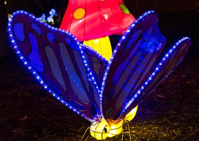 DandenongLightFestival2016-(12-of-20)