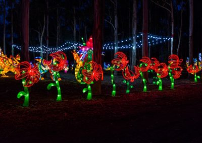 DandenongLightFestival2016-(3-of-20)