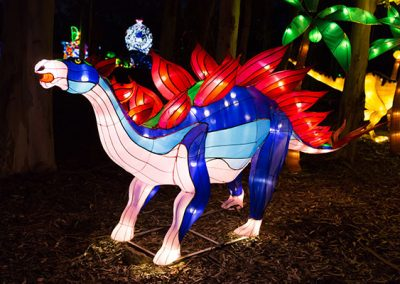 DandenongLightFestival2016-(7-of-20)