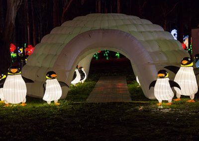 DandenongLightFestival2016-(8-of-47)