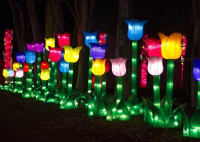 dandenong-light-festival-chinese-silk-lanterns10