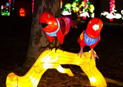 dandenong-light-festival-chinese-silk-lanterns11