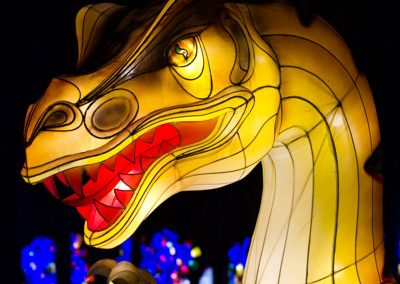 dandenong-light-festival-chinese-silk-lanterns14